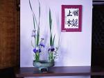 ukázka ikebany a kaligrafie