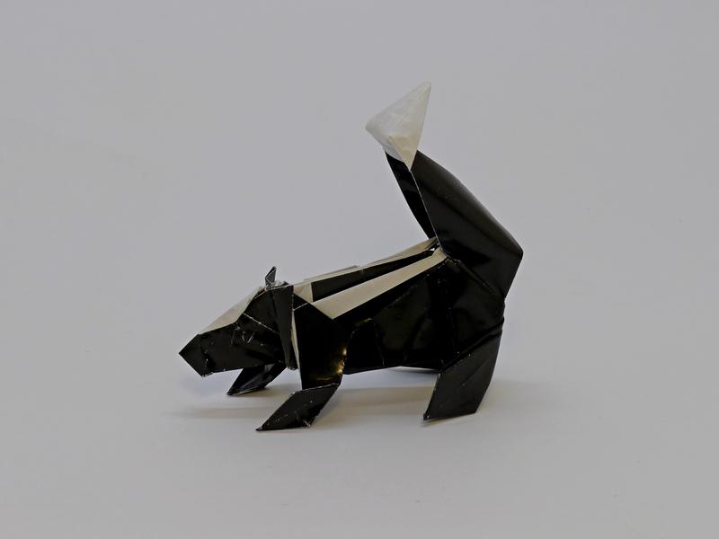 Marc Kirshenbaum: skunk
