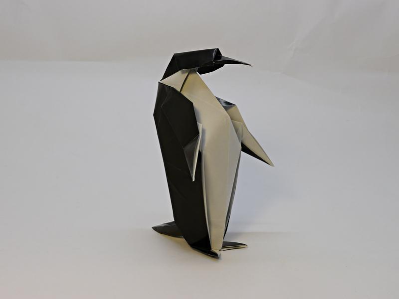 David Llanque: tučňák císařský