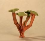 Voyer: baobab