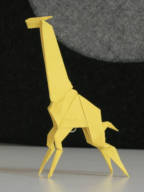 Engel: žirafa