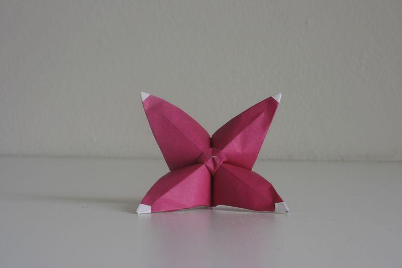 Kawamurová: květinka