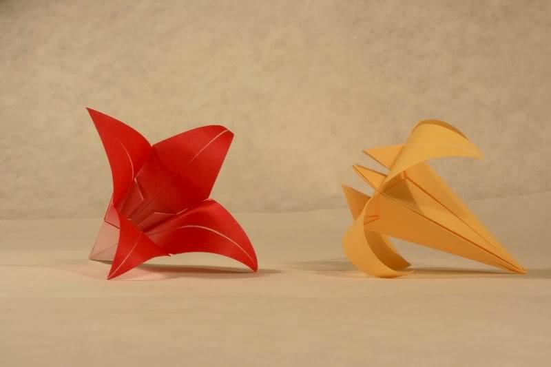 Tradiční lilie a tradiční kosatec