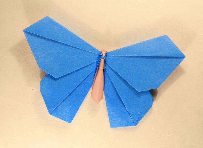 Michael LaFosse: motýl origamido