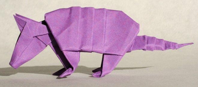 Pásovec fialový