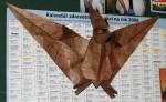 Pteranodon velký
