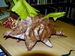 Fumiaki Kawahata: stegosaurus