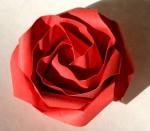 Minutová růže, konečná verze