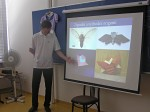tradiční proti modernímu pojetí origami