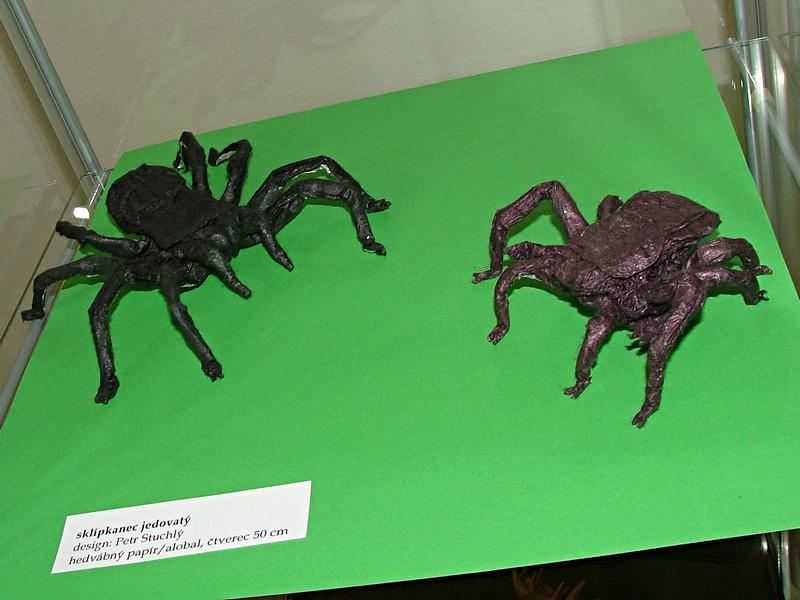 Petr Stuchlý: pavouci