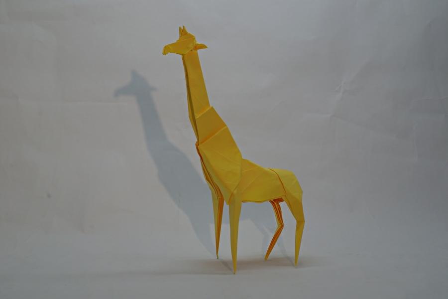 Artur Biernacki: žirafa, interpretace Ondřej Cibulka