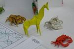 Petr Stuchlý: žirafa, krabi, skákavka