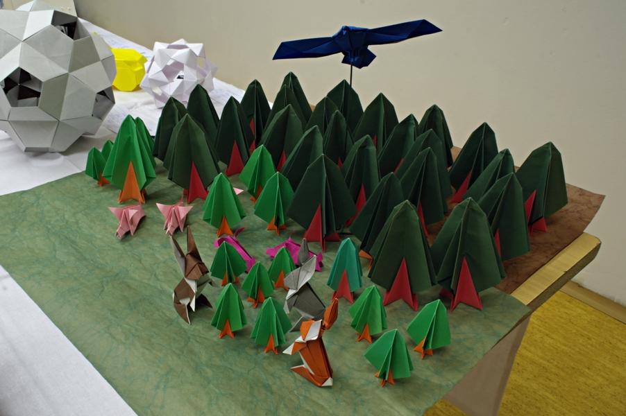 Ondřej Cibulka: les (popis modelů níže)