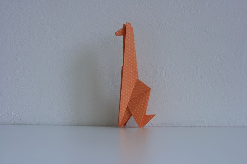 Sok Song: žirafa Shivani; interpretace Radim Cibulka