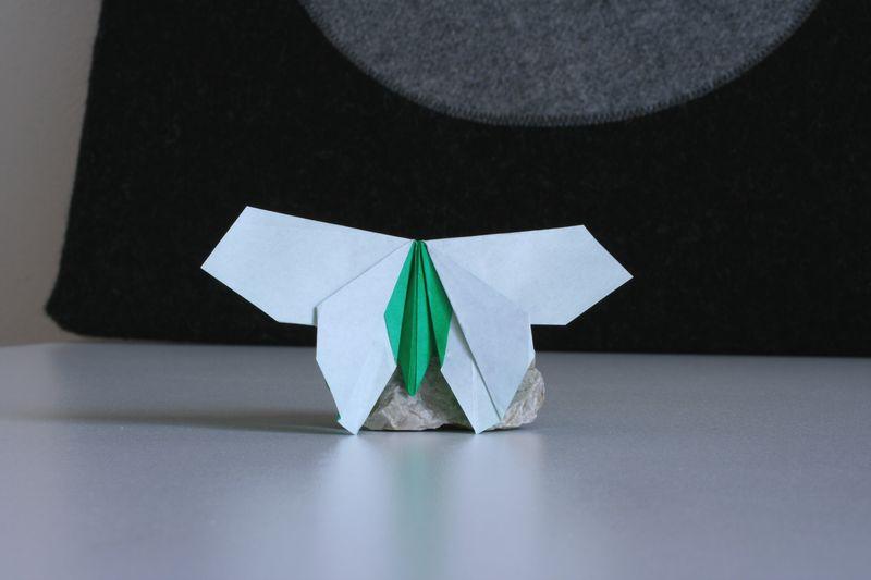 Sok Song: motýl, interpretace: Radim Cibulka