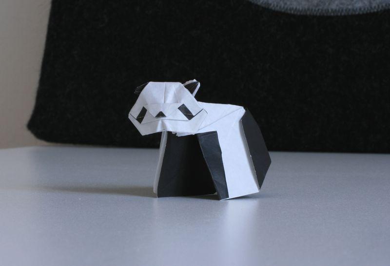 David Llanque: panda, interpretace Radim Cibulka