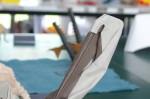 Hoang Tien Quyet: pelikán (detail)