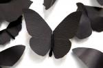 Carlos Amorales - černý motýl