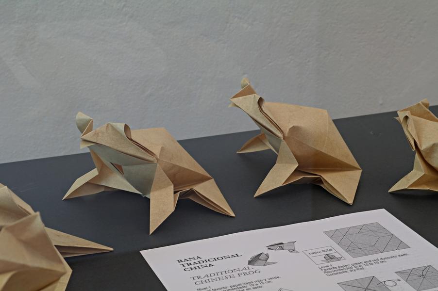 Román Díaz: jednodušší žába
