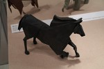 Román Díaz: kůň