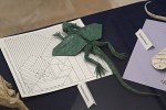 Petr Stuchlý: kuehneosaurus