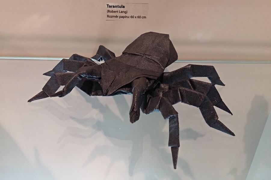 Robert Lang - tarantule