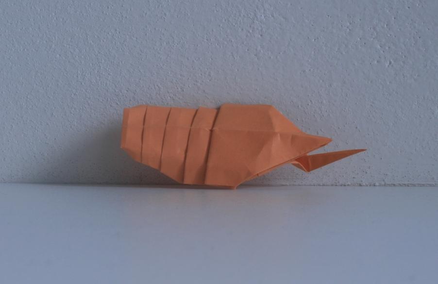 Kawahata larva-1