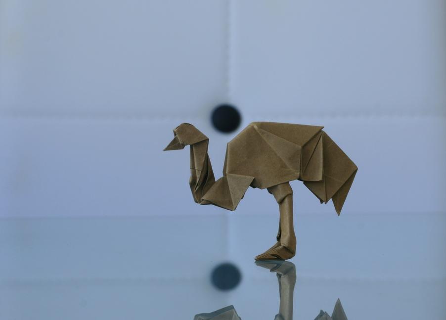 Hagiwara: emu